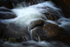 Flow (Jim Nix / Nomadic Pursuits) Tags: jimnix nomadicpursuits travel sedona arizona sliderockstatepark creek stream waterfall oakcreek luminar skylum sonya7ii sony longexposure 24240mm