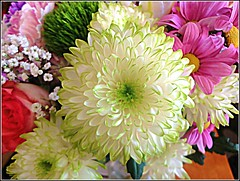 Colourful Bouquet .. (** Janets Photos **) Tags: uk hull flowers flora plants bouquets colours