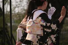 IMG_9363 (lightandshadow1253) Tags: washington dc cherry blossom parade cherryblossomparade2019 washingtondc