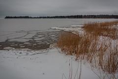 IMG_9008_edit (SPihtelev) Tags: ладога ленинградская область озеро зима лед льды вода маяк