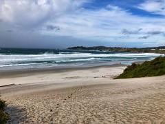 Carmel Beach, Windy, Carmel, California (Nancy D. Brown) Tags: carmel california carmelbeach pacificocean carmelbythesea beach ocean sand landscape