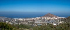 Life on a volcanic island (Janet Marshall LRPS) Tags: laatalaya mountainofajardar northwestgrancanaria volcaniccone canaryislands canaries