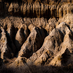 In Canyons 312 (noahbw) Tags: california d5000 nikon torreypinesstatereserve abstract autumn canyon desert erosion fractals landscape natural noahbw patterns rock shadow square stone weathered