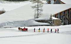 Skilift a cavalli (giorgiorodano46) Tags: marzo2019 march 2019 giorgiorodani solda sulden altoadige sudtirolo italy inverno winter hiver slitta cavalli skilift