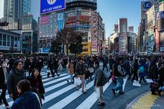 Tokyo's Street (GilBarib) Tags: voyage rue xt3 urban xf1655mmf28rlmwr travel fujix gillesbaribeauphoto fujifilm urbain street xf1655mm gilbarib tokyo japon