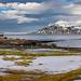 Norðausturvegur