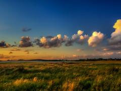 Bolund (ibjfoto) Tags: bolund cove danmark denmark ibjensen ibjfoto nationalparkskjoldungernesland natur roskilde roskildefjord skjoldungelandet vig outdoor sunset water