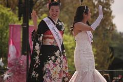 IMG_9350 (lightandshadow1253) Tags: washington dc cherry blossom parade cherryblossomparade2019 washingtondc