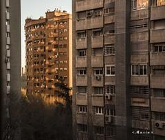 Amanece, una nueva vida, una nueva esperanza, amanece. (<María>) Tags: amanece madrid casa edificio arquitrectura sol sombra ventanas windos árbol arboles