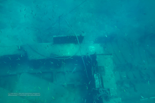 Underwater world. Coral reefs of Thailand                IMG_4083bs