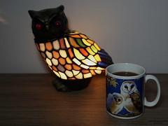Abendkaffee (ingrid eulenfan) Tags: 2019 kaffeepause pausecafé coffebreak 365project kaffee espresso cappuccino cup coffeepot tasse coffee coffeetogo lampe eule owl 30mm
