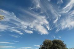 Mirando hacia el cielo (esta_ahi) Tags: castellvídelamarca cel cielo sky núvols nubes clouds penedès barcelona spain españa испания