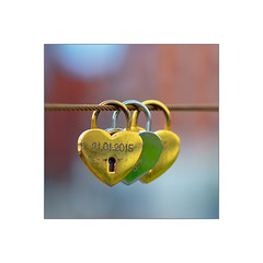 20160619_024440 (LeSzal) Tags: love symbol lock romance red heart padlock romantic shape valentine couple holiday day key celebration background closed metal concept icon isolated happiness eternity bridge fence happy sign white marriage design decoration celebrate wooden forever railing loyalty feeling traditional link unity wedding outdoors culture iron gift regions beauty idea wood beautiful