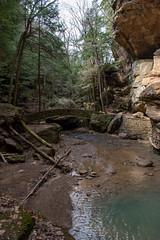 Hocking Hills-9 (saylorty) Tags: hockinghills hocking hills state park columbus ohio logan ash cave ashcave cedarfalls cedar falls waterfall hiking nature beautiful