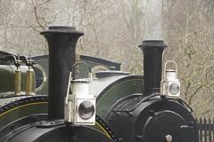 Stacks and lamps (Sundornvic) Tags: steam train locomotive rail railway wales mist rain green preservation heritage