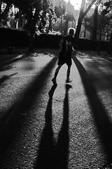 The sun is low, the pace is slow (Stefano Avolio) Tags: savolio stefanoavolio bn bw blackwhite blackandwhite biancoenero monocromo corsa running andatura pace parco jogging park controluce backlight