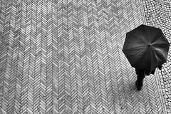 Abgeschirmt (Deinert-Photography) Tags: cityschlachte streetfotografie deutschland citylife fujifilmxf35mmf20rwr regen street schwarzweis bremen blackwhite schwarzweiss fujifilmxt3 regenschirm fusgänger wetter fuji hb hansestadt regenwetter streetart streetphoto streetphotography ubanphotography urban xt3 lluvia ombrello parapluie pioggia pluie rain regenscherm schirm umbrelle