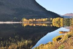 Haustleg -|- Autumn colours (erlingsi) Tags: no rotevatn volda sunnmøre oktober peaceful