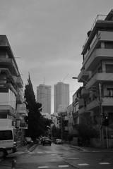 036A9390 (zet11) Tags: izrael telaviv ulica drzewa architektura