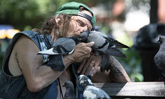 NYC100451 (Glenn Losack, M.D.) Tags: new york city pigeons larry bird man love compassion homeless downtrodden poor kissing birds washington square park glenn losack photojournalism streetphotographer streetphotography