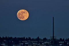 Full Moon rising over Calgary (John Andersen (JPAndersen images)) Tags: calgary full moon night sky sunset