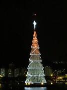 img_0674 (Ricardo Jurczyk Pinheiro) Tags: reflexo iluminação árvoredenatal lagoarodrigodefreitas riodejaneiro