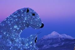 Gubałówka - widok na Tatry (e.topN) Tags: mountains lights polarbear bear pink sky winter snow landscape pentax tatramountains blue sunset