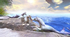 Friends (Amaya The Pegasus) Tags: hippokampoi hippocamps pegasus foal apple secondlife seahorse mythology birchteeth