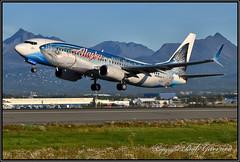 "N559AS Alaska Airlines ""Wild Alaska Seafood"" (Bob Garrard) Tags: n559as alaska airlines wildalaskaseafood boeing 737 anc panc"