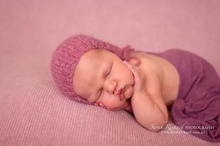 ~ Mahli | 11 days💗 Backdrop @alittlelifefabricandprops #northernriversphotographer . . . . #newbornphotographerlismore #lismorenewbornphotographer #cpcfeature #canonaustralia #instablog #newbornart #babywhisperer #newborngoodness #newbornartist