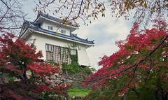Japanese castle in autumn (KaeriRin) Tags: sony7m2 28mm20 japan castle japanese autumn leaves red green sky trees