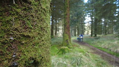 2019 Exploring the Fintry Hills and Trossachs with Jon (reizkultur) Tags: markus stitz bikepacking scotland 2019 trossachs adventure microadventure hills cycling