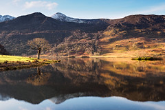 Crummock water morning reflection (Alf Branch) Tags: landscape lakes lakedistrict lake lakesdistrict leicadg818mmf284 refelections reflection cumbria clouds cumbrialakedistrict calmwater water winter westcumbria crummock crumcokwater alfbranch olympus omd olympusomdem5mkii