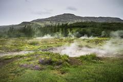 Geysir Fields (Longleaf.Photography) Tags: geysir field steam iceland mountain springs hot