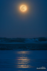 Icy Lunar Reflection (kevin-palmer) Tags: snowmoon supermoon fullmoon luna moonrise february winter lakedesmet frozen ice icy blue twilight evening reflection yellow telephoto night sky astronomy astrophotography