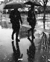 Businessmen under the rain (Fan.D & Dav.C Photgraphy) Tags: monochrome street recreation group man several travel white outerwear silhouette administration outfit sidewalk business umbrella rain black urban city citywalk
