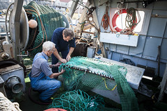 Swedish fishermen at work (FishAct) Tags: baltic campaign environmentalism fischerei fishery gothenburg göteborg illegal investigation schweden sea sweden fishact