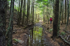 Lower Dewey Lake, Skagway AK (spruce_dweller) Tags: lower dewey lake trail skagway alaska forest reflection nature