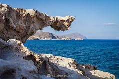 Señalando el mar (SantiMB.Photos) Tags: 2blog 2tumblr 2ig cabodegata níjar almería andalucía verano summer losescullos roca rock fósil 500px andalucia españa esp