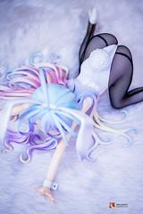B-STYLE - No Game No Life: Shiro Bunny Ver (GabrielVH) Tags: 14scale 60mm 7d bluehair bunnyears bunnygirl bunnysuit canon cute nogamenolife pvcfigure shiro stockings yelloweyes flickrsafe