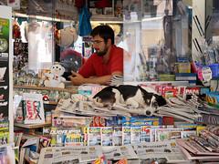 Doghouse (tamasmatusik) Tags: dog doghouse newsstand newspaper rome róma people urban cute sony sonynex nex3n 30mm streetphotography street sigma sigmalens may