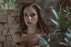 In the cellar (piotr_szymanek) Tags: malwina malwinas woman young skinny portrait face studio brick wall flower cellar 1k 20f 50f 5k 100f 10k bestportraitsaoi 20k
