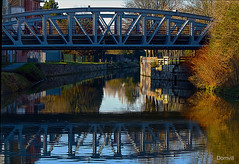 Pont et reflets (DOMVILL) Tags: arbre canal domvill eau france nord pont reflet wwwflickrcompeoplevildom