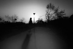 P4065294A Sunset (soyokazeojisan) Tags: japan osaka city sunset park sun light trees people bw blackandwhite monochrome digital olympus em1markⅱ 714mm 2019