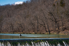 Fly Fishing at Bennett Spring, Missouri