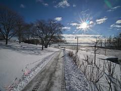 Sun and Snow (Gavin Edmondstone) Tags: bronteharbour brontecreek oakville ontario canada cans2s laowa75mm sun ultrawideangle snow