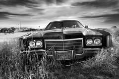 Cadillac Deville 70's (Fabdub) Tags: oldcar ciel voiture champ car cadillac leica texas usa abandonned sky clouds leicaq