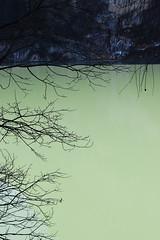In riva al lago n.1 (Vincenzo Elviretti) Tags: lago di braies trentino alto adige italia sud tirolo ghiacciato ghiaccio freddo cold