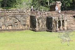 Angkor_terrazza degli elefanti_2014_01