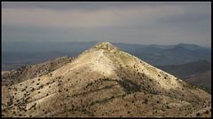 Arayıt (listera_ovata) Tags: tepe hill dağ mount mountain steppe step bozkır doğa nature naturephotography landscape landscapephotography landscapesofanatolia sonya7ii tamron90mmf25 tamron52b